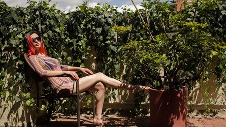Rose4all | www.showload.com | Showload image9